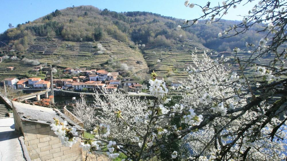 alojamiento-en-la-ribeira-sacra-en-primavera